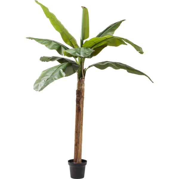 Deko Pflanze Banana Tree 190cm