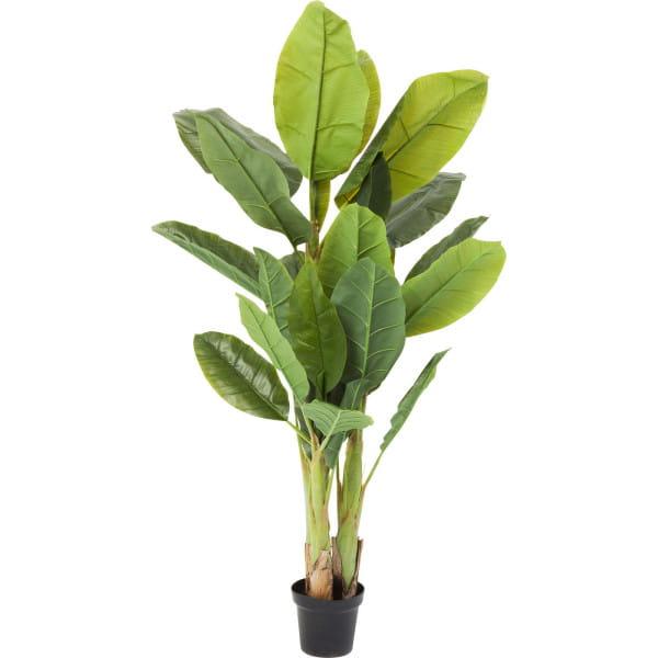 Deko Pflanze Banana Tree 180cm